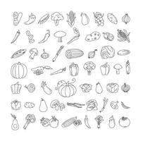 plantaardig element doodle lijn set. uit de vrije hand tekenen van groenten en fruit op een vel oefenboek. vector illustratie. set
