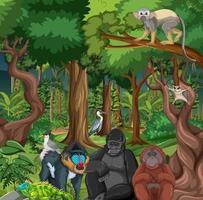 regenwoudscène met wilde dieren vector