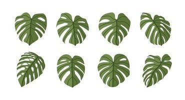 monstera deliciosa plant blad vlakke stijl geïsoleerd op de achtergrond vector
