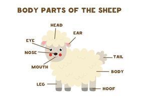 lichaamsdelen van de schapen. regeling voor kinderen. vector