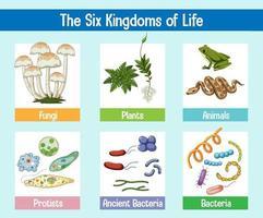 wetenschappelijke poster van zes koninkrijken van het leven