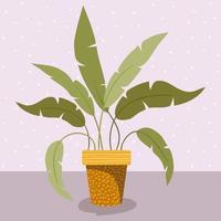 kamerplant in pot pictogram vector