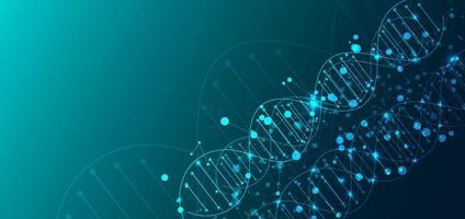 sjabloon voor wetenschap en technologieconcept of banner met dna-moleculen. vector