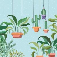 kamerplanten in macrame hangers tuinscène
