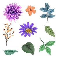 verzameling van prachtige kruiden en wilde bloemen en bladeren geïsoleerd op een witte achtergrond.
