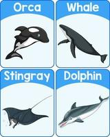 educatieve Engelse woordkaart van zeezoogdieren