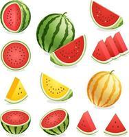 watermeloen. vector illustratie.