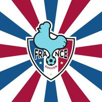 Franse voetbal-badge vector