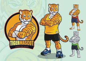 tijgermascotte voor vlekken en vechtsportenlogo en illustratie met afwisselende verschijningen vector