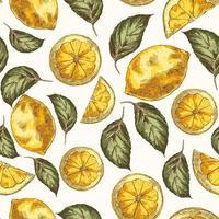 citroenen en bladeren hand getrokken vector naadloze patroon