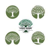 logo's van groene boom blad ecologie vector