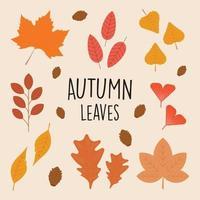 collectie set prachtige herfstbladeren in egale kleur stijl vector