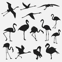 flamingo vogel silhouet vector sjablonen ontwerpset