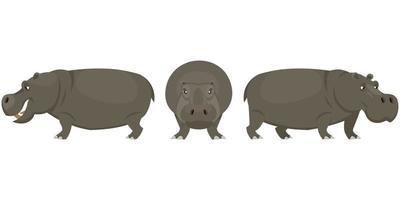nijlpaard in verschillende poses. vector