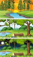 verschillende soorten bos horizontale scènes