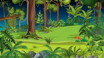 boslandschapsscène 's nachts met veel verschillende bomen vector