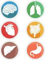menselijk inwendig orgaan pictogram lichaamsdelen symbool illustratie tekening vector