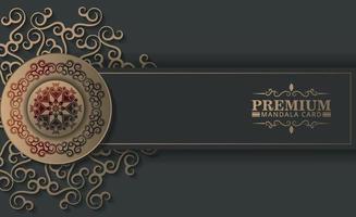 luxe mandala achtergrond concept vector