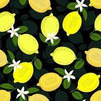 citroen patroon. naadloze decoratieve achtergrond met gele citroenen. helder zomerontwerp op een zeegroene kleurenachtergrond. vector