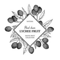 handgetekend lychee-ontwerp voor verpakking, banners, reclame, nieuwsbrieven. vectorillustratie in schetsstijl
