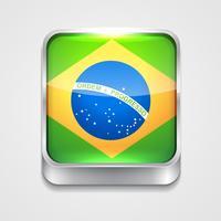 vlag van Brazilië vector