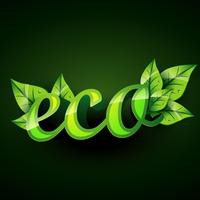 eco achtergrond vector