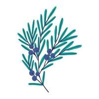vector illustratie. schattige plant met blauwe bessen. jeneverbes geïsoleerd op een witte achtergrond.