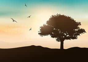 Zonsondergang boom achtergrond vector