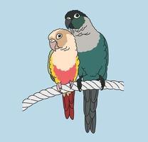 twee papegaaien zitten liefdevol. hand getrokken stijl vector ontwerp illustraties.