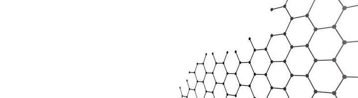 zwarte zeshoeken op een witte achtergrond - vector
