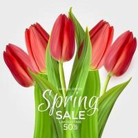 lente verkoop sjabloon achtergrond met realistische rode tulpenbloem. vector illustratie