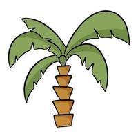 palmboom in cartoon stijl. vectorillustratie geïsoleerd op een witte achtergrond. vector