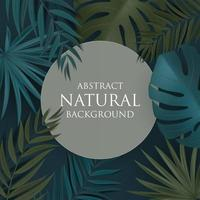 abstracte natuurlijke achtergrond met tropische palm en monsterabladeren. vector illustratie eps10