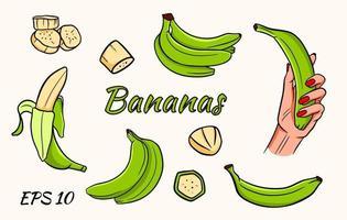 vector set van bananen. banaan in de hand, bananenpartjes, bananen in een tros. groene bananen.