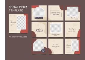 sjabloon sociale media feed mode vrouwen puzzel vector
