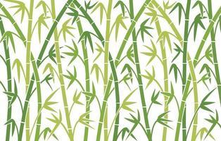 bamboe achtergrondontwerp vector