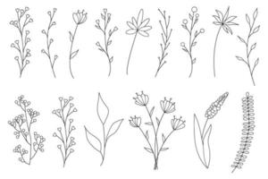 verzameling minimalistische eenvoudige bloemenelementen. grafische schets. modieus tattoo-ontwerp. bloemen, gras en bladeren. botanische natuurlijke elementen. vector illustratie. omtrek, lijn, doodle stijl.