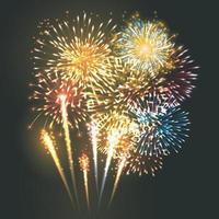 veelkleurige vuurwerk ontploft in de lucht 's nachts vector illustrator 10