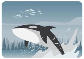 Orka's op het meer vector