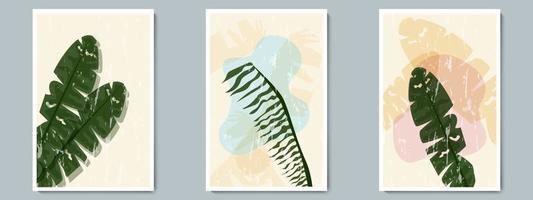 botanische muur kunst vector poster lente, zomer set. minimalistische tropische plant met abstracte vorm en grunge textuur
