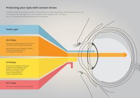 Zichtbaar licht door de ogen. Zichtbare kleur. vector