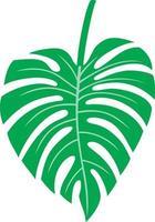 blad van monstera - tropische plant vector