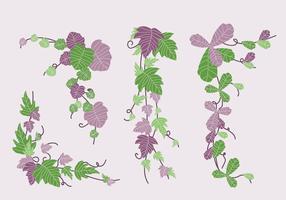 Groene en paarse Poison Ivy Vine vectorillustratie