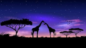 afrika bij nacht sterrenhemel achtergrond vector