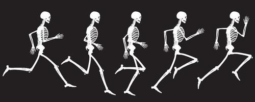 witte kleur silhouet weergave van de lopende cyclus van menselijk skelet vector tekening