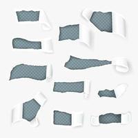 gescheurd papier krullen realistische set vectorillustratie vector