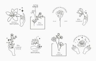 schoonheid occulte collectie met bloem vector
