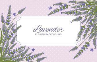 schoonheid lavendel achtergrond vector