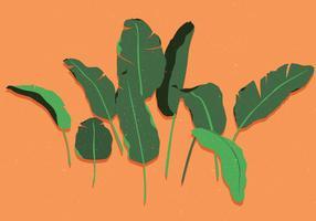 bananenblad vol 2 vector