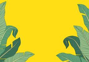 Bananenblad achtergrond